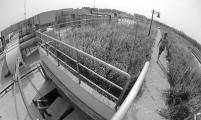 北京首座地下再生水厂一期正式投入使用
