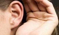 耳朵颜色暗示全身健康