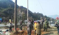 旌德县孙村镇威廉希尔登录协利用植树活动宣传奖励扶助政策