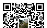 泰宁县新桥乡:计生宣传搭上微信快车