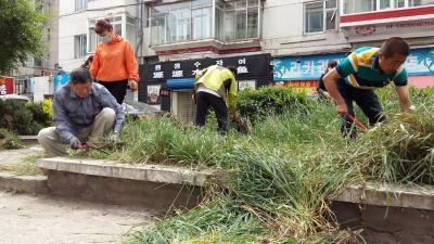 民安社区威廉希尔登录协组织开展修枝除草活动