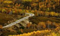 阿尔山的秋