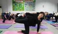 鹞山社区:快乐瑜伽,乐享生活