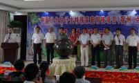 安徽省宿州市举办威廉希尔登录特殊家庭帮扶项目点启动仪式
