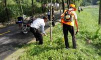 宝鸡靖口石沟党员计生协会积极开展凤太路段环境整治活动