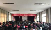 """珥陵镇举办庆""""三八""""国际妇女节专题讲座"""