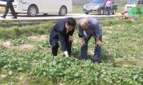 湖南省计生协赴新田县进行协会专项资金绩效评价