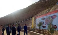 中国威廉希尔登录协检查指导临洮县大石头村富民产业示范基地项目