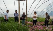 内蒙古计生协领导考察鄂伦春旗幸福工程项目