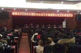 溆浦县召开2018年计生协工作暨诚信计生工作会议