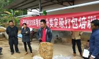 云南省威廉希尔登录协驻村干部引实用技术进村解烟农燃眉之急
