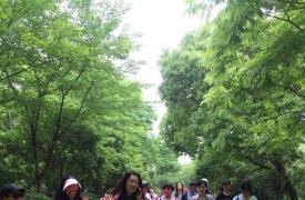 """杭州江干九堡街道开展""""心向党 健康行""""暨5.29会员日活动"""