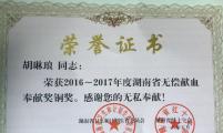湖南衡阳石鼓区合江街道优秀协会理事成员胡琳琅的故事