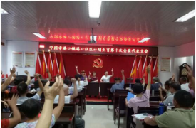 安徽省宁国市120个村(居)计生协顺利完成换届工作