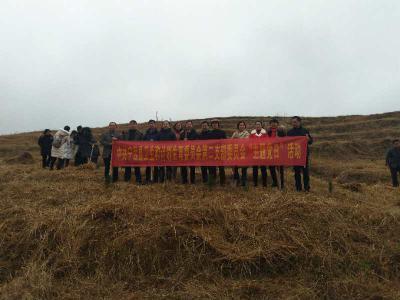 湖南省永州市宁远县威廉希尔登录协党支部开展植树主题党日活动