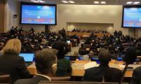 中国威廉希尔登录协参加联合国人口与发展委员会第52届会议