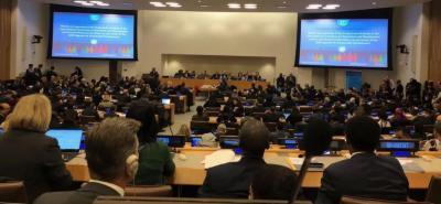 中国计生协参加联合国人口与发展委员会第52届会议