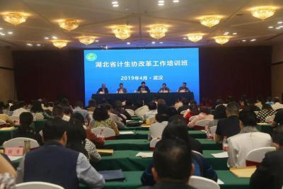 快讯!湖北省威廉希尔登录协改革工作培训班在汉举办