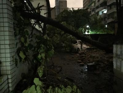 超强台风刮起别样的关爱