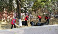 山东省济南市计生协机关党员志愿服务队到社区开展义务劳动