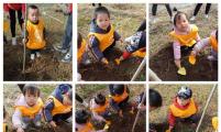 """陕西省岐山县科学育儿项目点开展幼儿""""参与绿色行动 保护美丽家园""""活动"""
