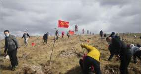 内蒙古自治区呼和浩特市计生协开展义务植树活动